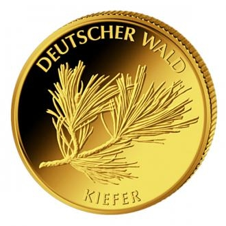 2013 - Germany 20 € - Deutscher Wald - Kiefer - BU Click to view the picture detail.