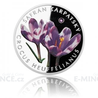 2015 - Niue 1 NZD Silver Coin Saffron Carpathian - Proof Click to view the picture detail.