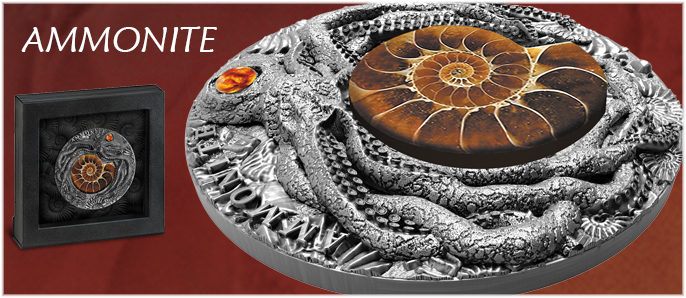 Ammonite with Amber